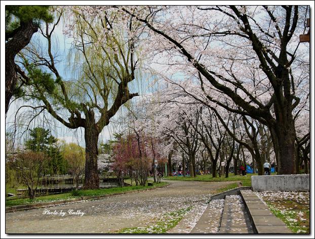 合浦公園-8.jpg