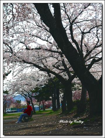 合浦公園-12.jpg