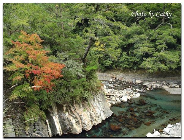 2009武陵賞楓-6.jpg