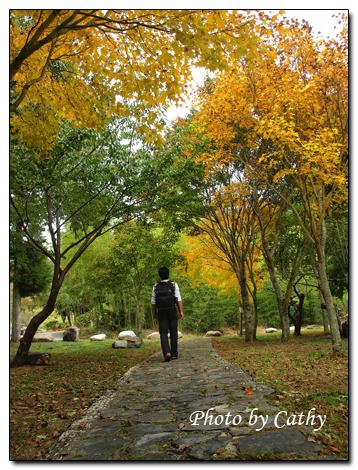 2009武陵賞楓-12.jpg