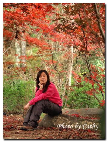 2009武陵賞楓-13.jpg