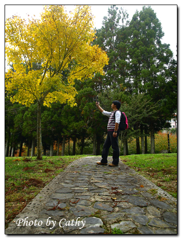2009武陵賞楓-20.jpg