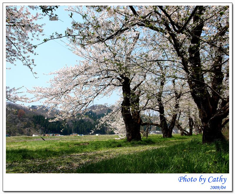 檜木內穿堤-9.jpg
