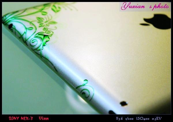 DSC03071.jpg