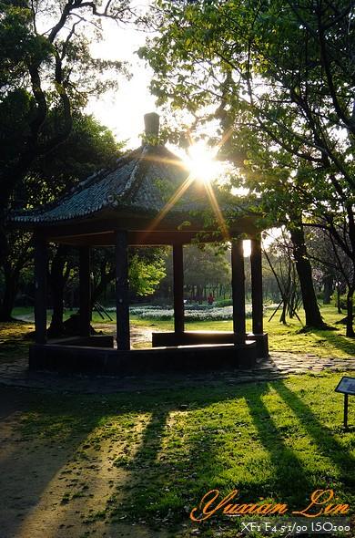 陽明山201