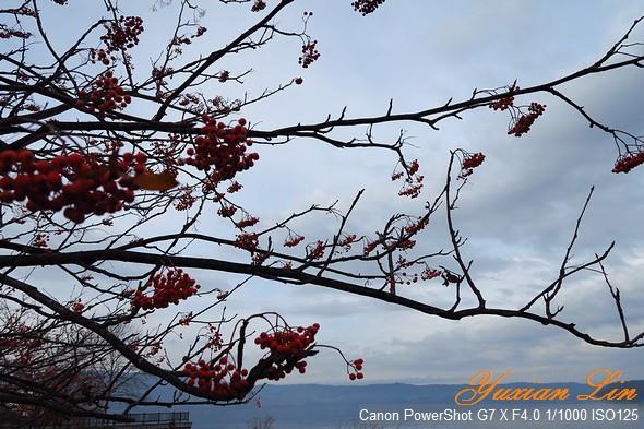 北海道0658.jpg