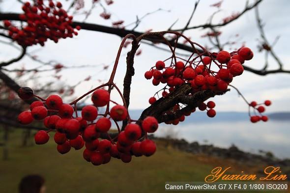 北海道0659.jpg