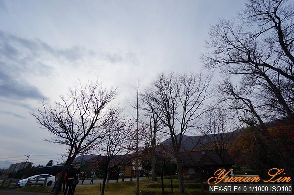北海道0679.jpg