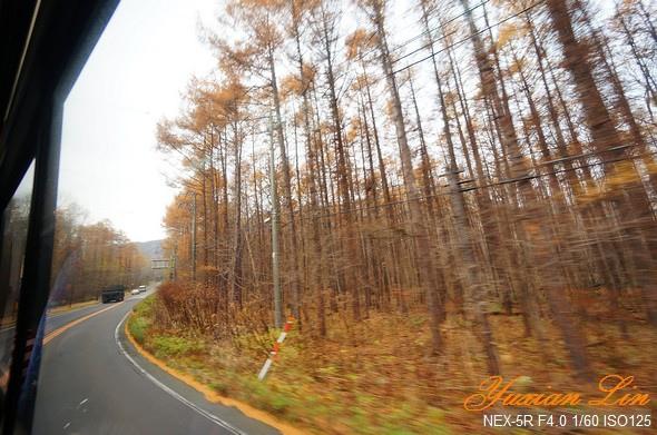 北海道0723.jpg