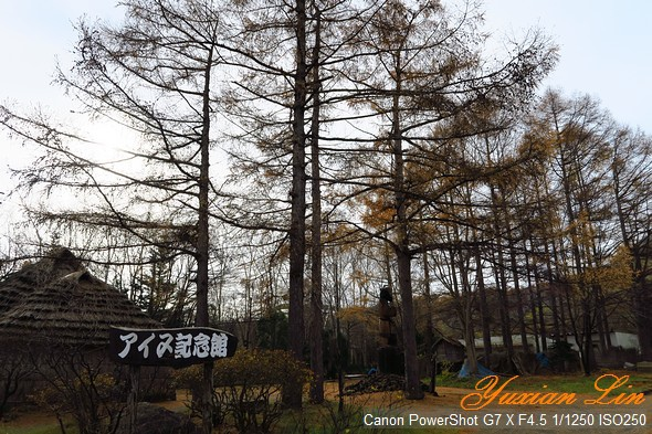 北海道0740.jpg