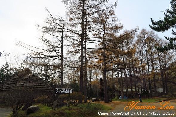 北海道0754.jpg
