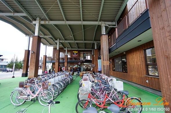 北海道1101.jpg