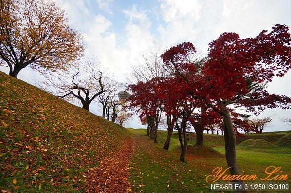 北海道1151.jpg