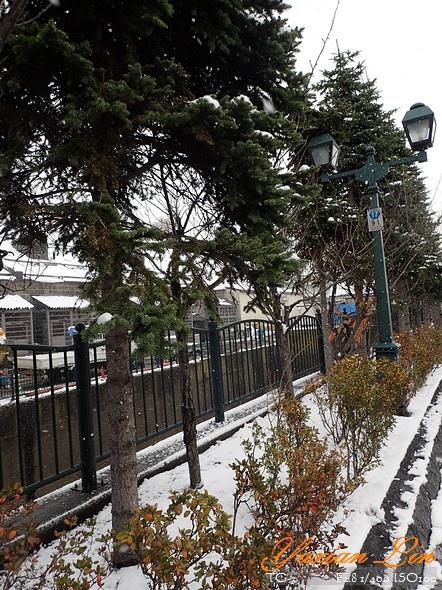北海道2374.jpg