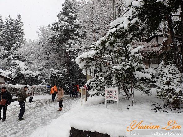 北海道2544.jpg