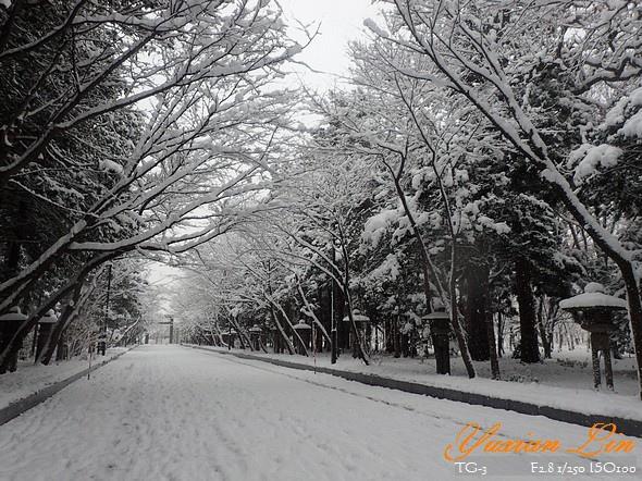北海道2633.jpg