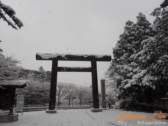北海道2674.jpg