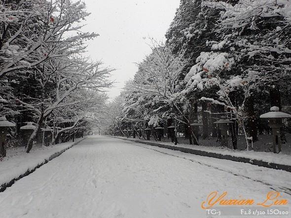 北海道2629.jpg