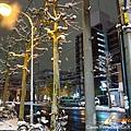 北海道2737.jpg