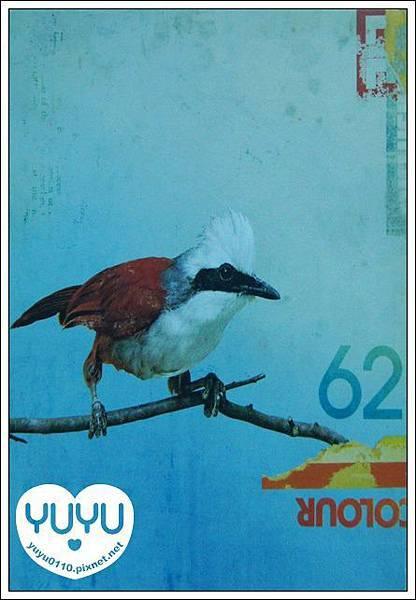 收到的明信片NO.66