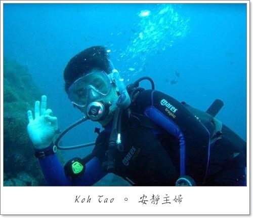 DSC00127[1]潛水2.JPG