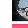 pinkbanner3.jpg