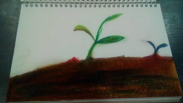 IMG_20150201_233049
