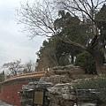 景山公園2.JPG