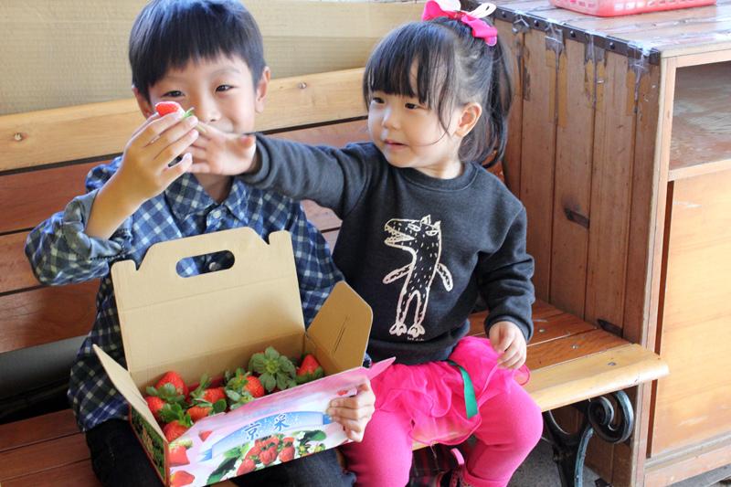 大湖草莓_05.JPG