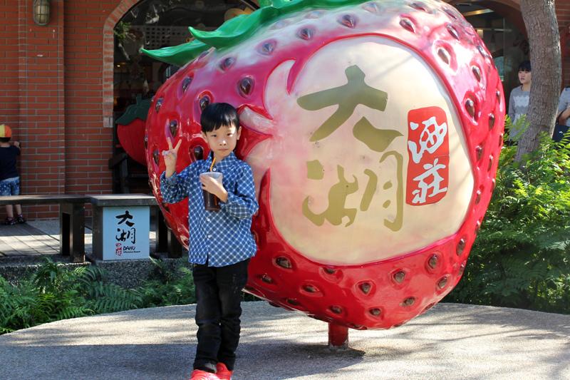 大湖草莓_13.JPG