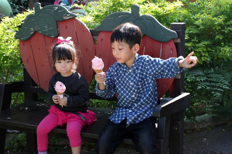 大湖草莓_12.JPG