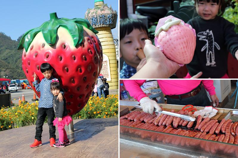 大湖草莓_14.jpg
