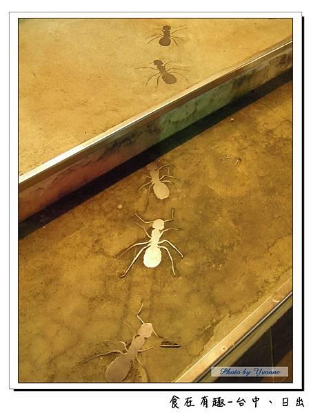 3 原來是螞蟻呀.jpg