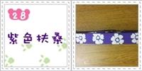 紫色扶桑.jpg