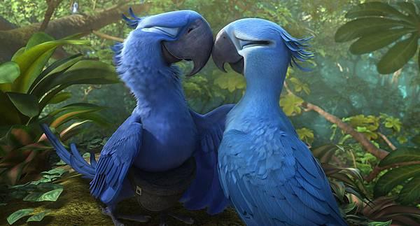 rio2-blu-jewel-gallery-image.jpg
