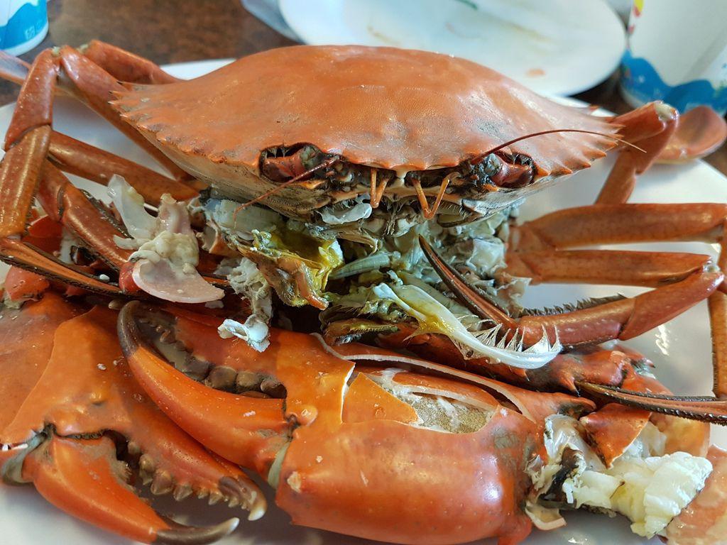 螃蟹 (2).jpg