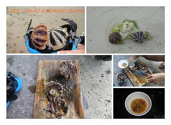 2012.1.9-17大堡29.jpg