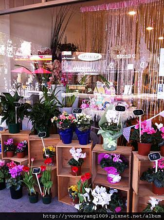 flower shop in waroonga.jpg