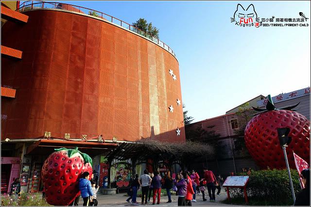 採草莓-奇奇草莓園 (06).jpg