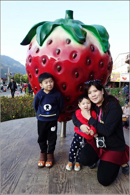 採草莓-奇奇草莓園 (13).jpg