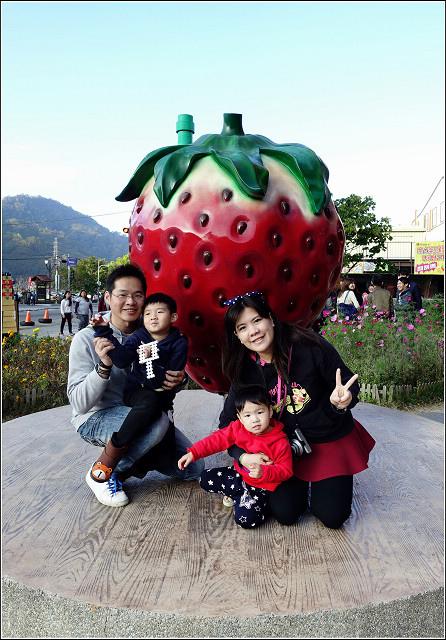 採草莓-奇奇草莓園 (14).jpg