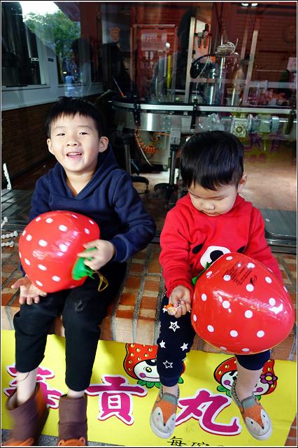 採草莓-奇奇草莓園 (26).jpg