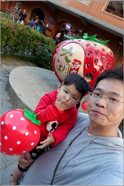 採草莓-奇奇草莓園 (34).jpg