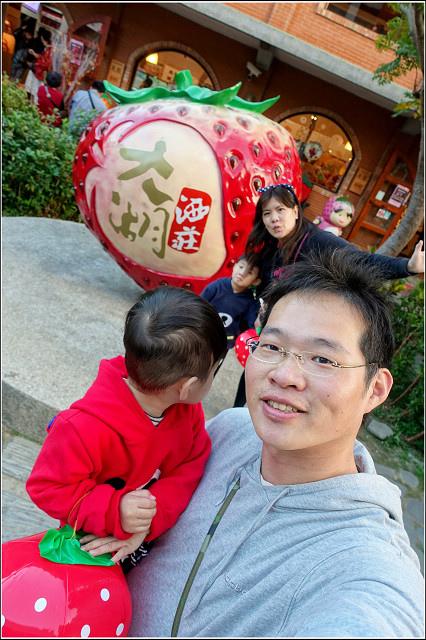 採草莓-奇奇草莓園 (35).jpg