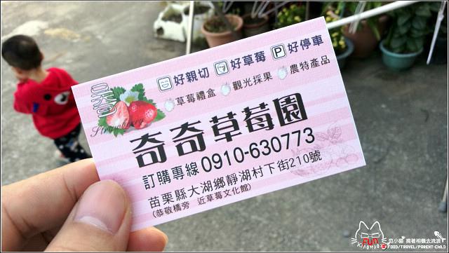 採草莓-奇奇草莓園 (88).jpg