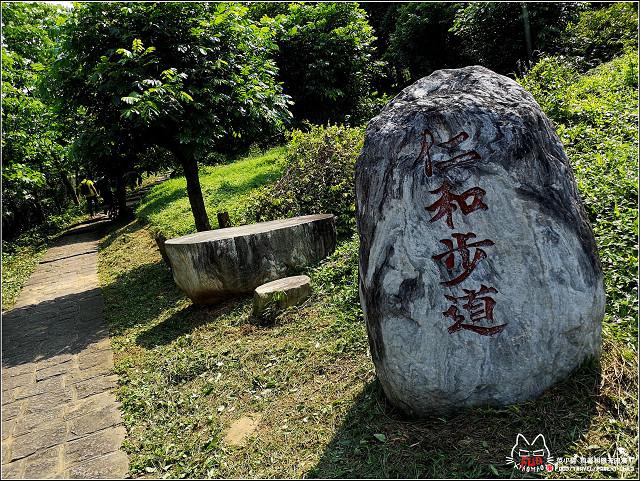 仁和步道桐花 - 062.jpg