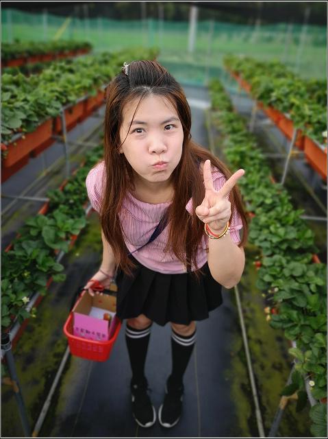 香村花園客家餐廳 (56).jpg