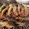 採蝦大盜 泰國流水蝦 - 031.jpg