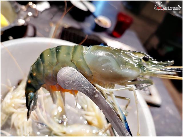 採蝦大盜 泰國流水蝦 - 058.jpg