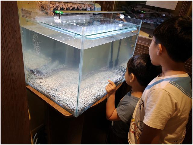 三河中川屋鰻魚飯 - 020.jpg
